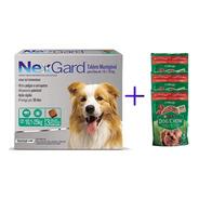 Kit Antipulgas Nexgard 10,1 A 25kg Caixa Com 3 Tabletes Mast