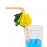 Canudo Plástico Flexível Decorado Frutas - 10 Unidades