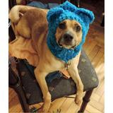 Tejidos A Crochet - Gorros Para Perros
