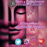 Cuadros Buda Yoga Reiki Om Envíos Todo El Pais Fotos Prop