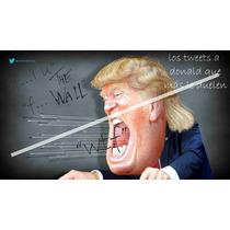 Caricatura Poster Tweet De Donald 50 X 90 Cm Papel Glossy