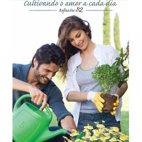 Livro Cultivando O Amor A Cada Dia Wélida Dancini Silva