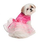 Disfraz Para Perro Moda De La Bailarina Del Animal Doméstic