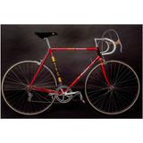 Bicicleta Antigua Carrera Coleccion Raleigh Record Original