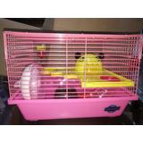 Jaula Hamster Pequeña Espectacular