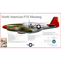 Lienzo Tela Avión P51 Mustang Usa Raf 1943 50 X 90 Cm Poster