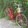 Bicicleta Dama Bergamasco, De Paseo Clásica