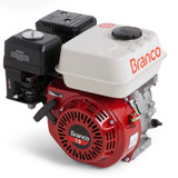 Motor Estacionário A Gasolina 7.0hp 4 Tempos Branco