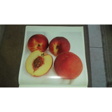 Láminas De Frutas Para Enmarcar