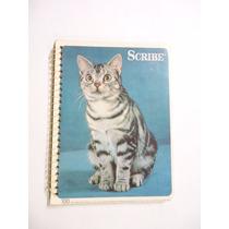 Cuaderno Scribe Forma Francesa Cuadro Grande
