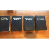 Tratado De Anatomia Humana Testut Latarjet. Novena Edicion.