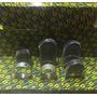 Cojinete De Bancada Chrysler Neon 2.0 16v Solo 0.25 0.50mm