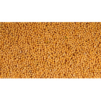 Semilla De Mostaza Amarilla 1390 Código (200 Gramos)