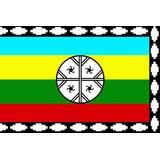 Bandera Mapuche Nagche A Pedido Pregunte Antes De Rematar