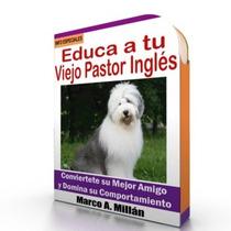 Como Educar A Un Viejo Pastor Ingles - Guía Adiestramiento