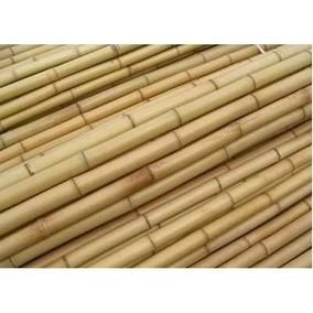 Vara De Bambu Cana Da Índia Tratada E Selecionada