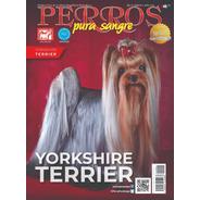 Revista Perros Pura Sangre. Yorkshire Terrier. Abril 2019.