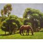 Quadro Arte Pintura Óleo Paisagem Cavalo 23x27 Frete Grátis
