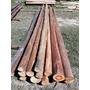 Palos,troncos,postes,pergolas,de Eucalipto ,diametro 9-12cm