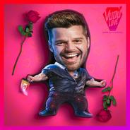 Cojín Peluche Ricky Martin Chiquito 40x30cm Vudú Love