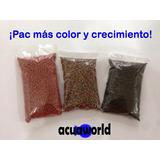 Oferta Comida De Peces Para Crecimiento Y Color Acuaworld