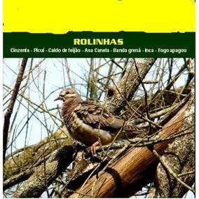 Cd Rolinhas - Canto Clássico
