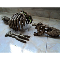Adorno Para Acuario Con Forma De Esqueleto De T-rex