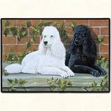 Alfombra Puertas Casas, Americana, Perro Poodle 68 X46 Cms