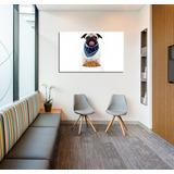 Cuadro Perro Comiendo Alimento Balancado Veterinaria 20x30cm