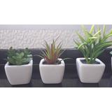 Mini Macetas Con Cactus Artificiales, Adorno, Souvenirs.
