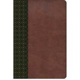 Biblia De Estudio Scofield -verde / Cafe Simil Piel- Rv 1960