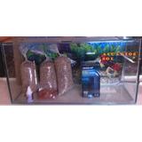 Kit Acuarios Completos(80*25*30),4 Peces Agua Fría $46.000