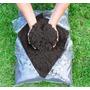 Casca De Arroz Carbonizada - Subs Para Plantas (pitaya) 5 Lt