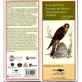 Aves De Presa Diurnas De Mexico Guía Rápida