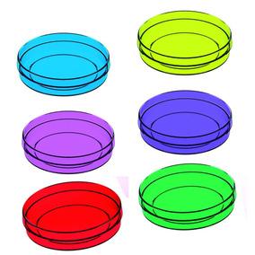 100 Latinhas Acrílico Mint To Be Transparentes Coloridas 5x1
