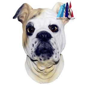 Mascarello Bulldog Inglés Látex Cabeza... (full Head.)