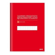 Caderno  Capa Dura  96 Fls Quadriculado Vermelho Pt 1 Un
