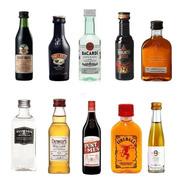 Combo Miniatura Oferta X10 Whisky Gin Licor Vodka Envio
