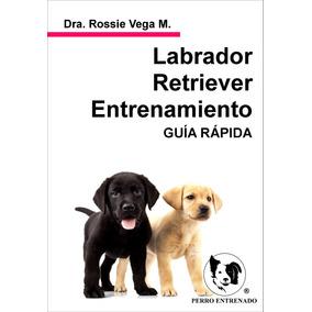 Manual Del Labrador Retriever Entrenamiento Rapido