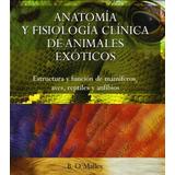 Anatomía Y Fisiología Clínica Animales Exóticos - Libro Pdf