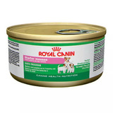 10 Royal Canin Mini Starter Mouse Madres & Cachorros 0.17kg