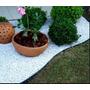 Forração Jardim Pedrisco Branco, Jardinagem, Saco 40 Kg