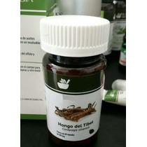 Tibet Cordyceps Sinensis