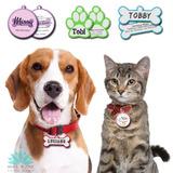 Plaquitas De Identificacion Imprimibles Para Tu Mascota Diy