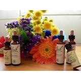 Flores De Bach Terapias