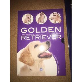 Golden Retriever Diana