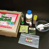 Fábrica De Slime. Kit Para Hacer Moco. Masa