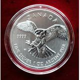 Moneda Plata Aves Rapaces 1 Onza Halcon 2014 !