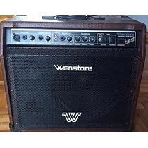 Equipo De Teclado Wenstone 30 Watts