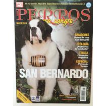 Revista Perros Pura Sangre San Bernardo 2 Pack Ediciones